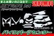 ☆ハロウィンセール☆スカイウェイブ250 CJ44A 外装13点セット 白 《限定セット》 エンブレム付