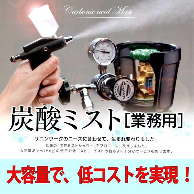 炭酸ミスト 「業務用」(ボンベ別売)【RCP】
