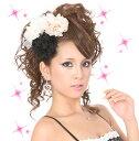 【ロマクリ姫ミディ vm-05】5250円以上で送料無料です!