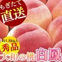 Hakuhou-photo3002