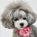 【送料無料】【BIRDIE(バーディ)小型犬首輪&リードセット】デニムローズカラー&リードセットsizeS