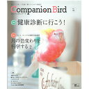 誠文堂新光社 / Companion Bird (コンパニオンバード) NO.31 / 9997576 / ネコポス対応可能( BIRDMORE バードモア 鳥 とり トリ イ..