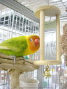 カワイ / ミラーベル / 9992131 ( BIRDMORE バードモア 鳥用品 鳥グッズ 鳥 とり トリ おもちゃ 鏡 かがみ インコ 文鳥 コザクラ ウロコ サザナミ ヨウム オウム プレゼント )