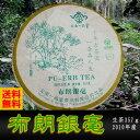 プーアル茶 布朗銀毫生茶(フロギンゴウ)2010年産  生茶 ダイエット プーアル茶 diet プーアール茶 プアール茶 中国茶 酵素..
