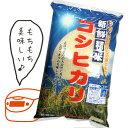 【送料無料】愛知県産 社長の目利き 活け〆(神経締め) 天然真鯛(マダイ・またい、桜鯛) 1kg