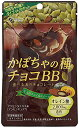 ファイン かぼちゃの種チョコBB 40g