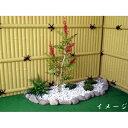 南天 高さ100cm (造花 人工観葉植物 ナンテン 和風 ガーデニング 造園 庭園 坪庭 エクステリア)