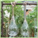 RoomClip商品情報 - LARGE HANKING VASE 32【テラリウム/吊り下げ/ハンキング/ガラス】