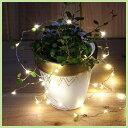 【メール便可】WARM WHITE LIGHT【LED/イルミネーション/インテリア/電球/クリスマス】10P03Dec16