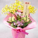 豪華な洋蘭の寄せ植え※8号陶器鉢入り!開店祝いのお花や開業祝いのお花等に最適【全国送料無料】