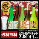日本酒 最高金賞受賞酒入り豪華版飲み比べセット TNY-5 お歳暮誕生日ギフト贈り物パー