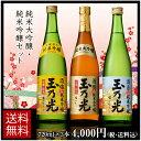 日本酒 純米大吟醸・純米吟醸720ml×3本セット TS-3B 誕生日ギフト贈り物パーティーお歳暮正