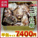 ■【大粒殻付き3年牡蠣】 岡山県 牛窓産 三年牡蠣 | 半缶(5kg)■送料無料!楽天市場、最安値に