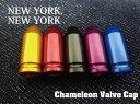 『NEW YORK,NEW YORK』【カメレオンバルブキャ...