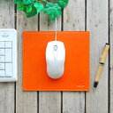 Mouse_p_big00
