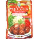 中華風野菜大豆ボール 100g 三育フーズ 恒食