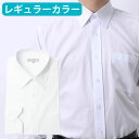 ビジネス・フォーマル・カジュアルにも!レギュラーカラー 長袖...
