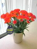 光触媒 カーネーション オレンジ アートフラワー  ミニ 空気清浄機 造花 アレンジ 母の日 ギフト プレゼント 贈り物