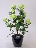 """""""超質感""""光触媒アートフラワー(造花) ばら(バラ・薔薇)1本立ち(グリーン)生花と間違えるほどのリアルな質感をぜひ体験してください。贈り物・母の日・新築祝・開店祝・誕生日・記念日"""