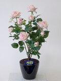 """""""超質感""""光触媒アートフラワー(造花) ばら(バラ・薔薇)1本立ち(絞りピンク)生花と間違えるほどのリアルな質感をぜひ体験してください。贈り物・母の日・新築祝・開店祝・誕生日・記念"""