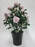 """""""超質感""""光触媒アートフラワー(造花) ばら(バラ・薔薇)2本立ち(ピンク)生花と間違えるほどのリアルな質感をぜひ体験してください。贈り物・母の日・新築祝・開店祝・誕生日・記念日・"""