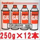 イワタニ 『ガスボンベ』12本 セット IWATANI カセ...