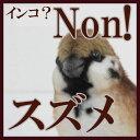 [ハンサ]スズメ[7019]HANSAのリアルな動物ぬいぐるみです。懐かれたい!手乗りすずめを疑似体