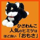 サンレモン ひざわんこ柴犬【ブラック】[...