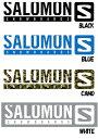 【スノーステッカー】SALOMON(サロモン)STICKER M(カッティングタイプ)SIZE:W270×H58mm 【350】