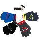 【サッカーアクセサリー・冬物】PUMA(プーマ)キャットロゴ マジックグローブ041287【350】