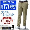 チノパン 大きいサイズ メンズ ストレッチノータックパンツ ゴルフパンツ DANIEL DODD 【...