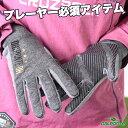 ダウポンチ 手袋 [dpz-0196 フィールドグローブ] dalponte フットサル ウェア ダウポンチ 手袋 【DM便対応】
