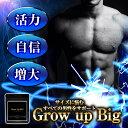 クラチャイダム・マカ・シトルリン・アルギニン・トンカットアリ 男性用サプリ Growz Up BIG 90粒《送料無料》※精力剤や薬ではなくサプリメントです