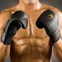 パンチンググローブSTD【BODYMAKER(ボディメーカー)】格闘技 空手 ボクシング ミット