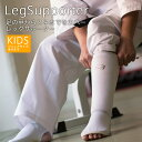 It is a martial art supporter a leg supporter regular (one set) [BODYMAKER (body maker)]