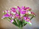 フリージア12本セット(パープル)【造花】【人工観葉植物】【光触媒】【RCP】