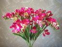 フリージア12本セット(ビューティー)【造花】【人工観葉植物】【光触媒】【RCP】