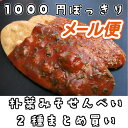 【メール便お試し対応品】国産 うるち 米 手作り 煎餅 せん...