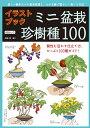 イラストブックミニ盆栽 珍樹種100