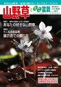隔月刊「山野草とミニ盆栽」14年新春号