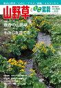 隔月刊「山野草とミニ盆栽」14年陽春号
