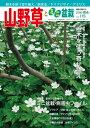 隔月刊「山野草とミニ盆栽」16年陽春号