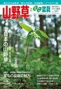 隔月刊「山野草とミニ盆栽」17年陽春号