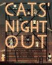 Cats' Night Out CATS NIGHT OUT (Paula Wiseman Books)