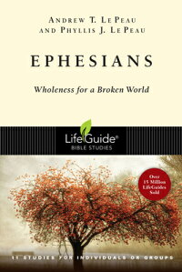 Ephesians��_Wholeness_for_a_Bro