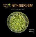 世界で一番美しい植物細胞図鑑 [ スティーヴン・ブラックモア ]