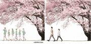 ̤�衡Spring Package (��������������)