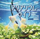 DVD>ミュージック>洋楽>インストゥルメンタル商品ページ。レビューが多い順(価格帯指定なし)第2位