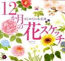 12か月の花スケッチ はじめての水彩画 [ 田代知子 ]