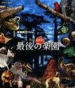 NHKスペシャル ホットスポット 最後の楽園 Blu-ray-BOX【Blu-ray】 [ (ドキュ